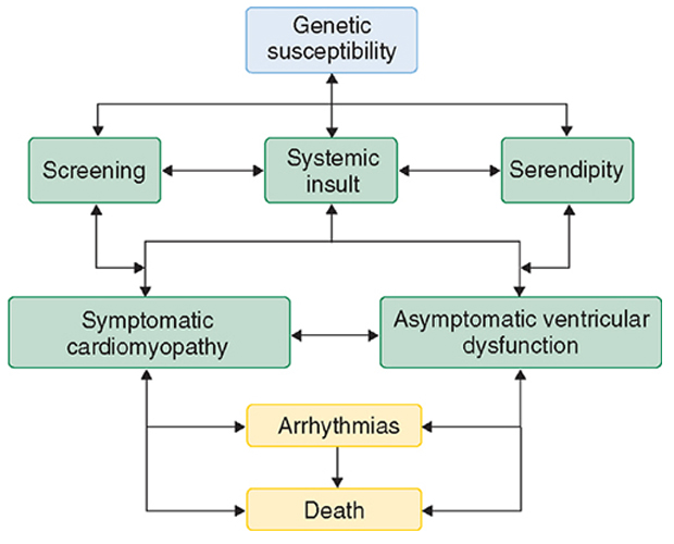 Dilated and Restrictive Cardiomyopathies