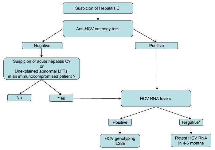 Diagnostic Algorithm For Hepais C Infection