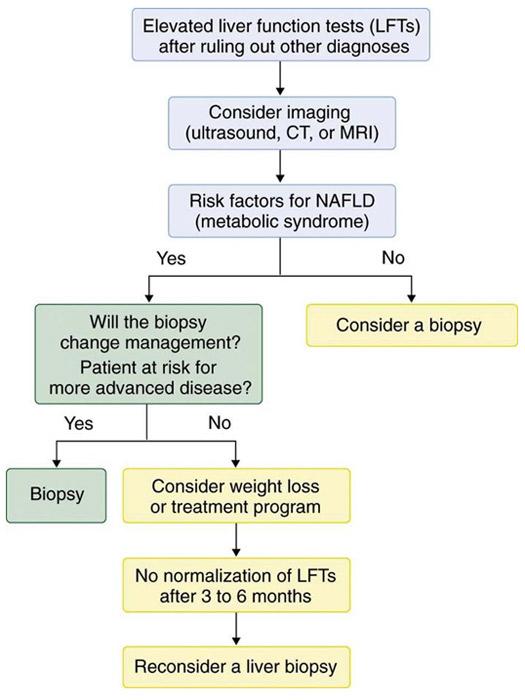 Nonalcoholic Fatty Liver Disease