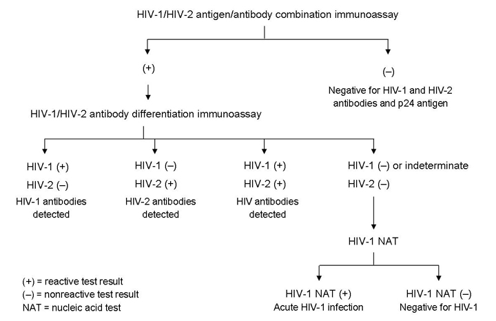 HIV for the Primary Care Physician